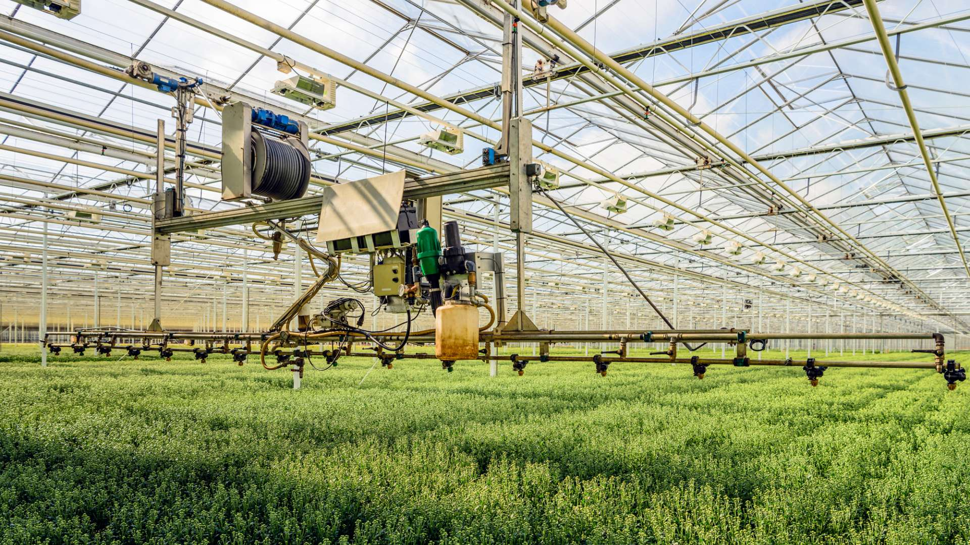 A photo of an automated crop pesticide and hydration system