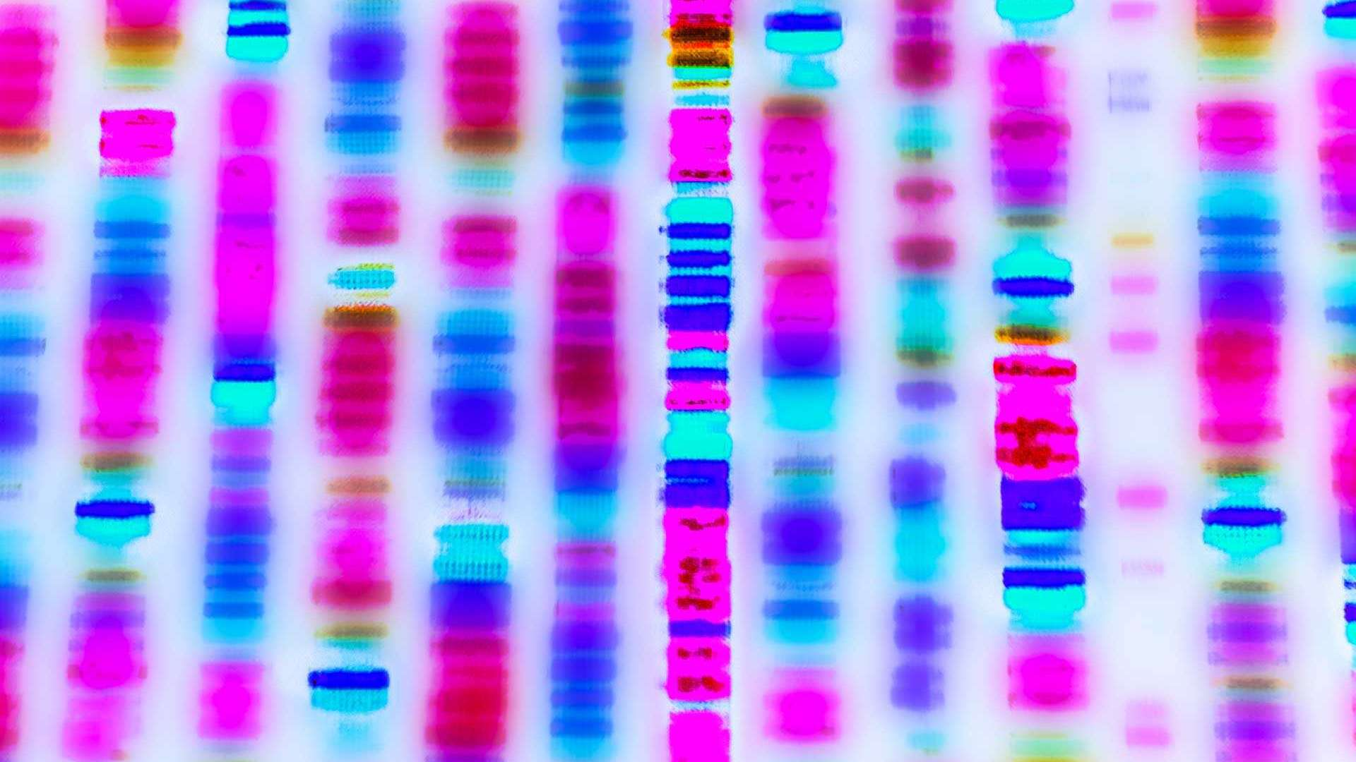Unlocking the secrets of DNA has meant researchers can undersatnd the molecular basis of diseases