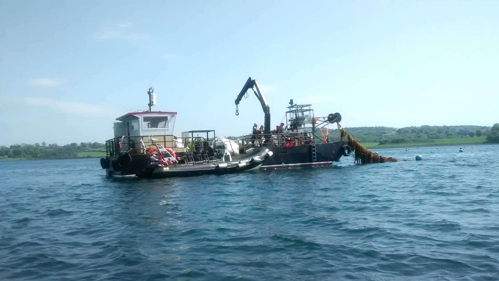 SeaGas Project Harvests Biggest Seaweed Batch in UK | CPI